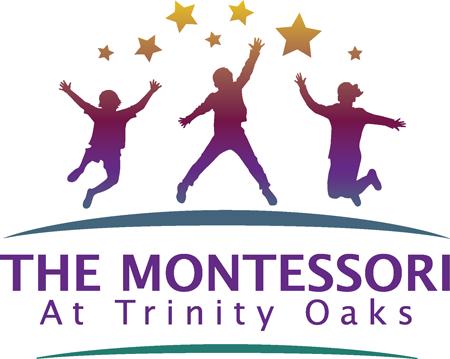 Trinity-Logo-Large